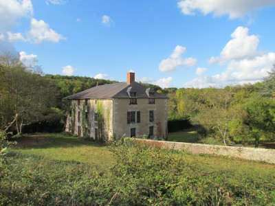 French property, houses and homes for sale in Lussac-les-Chateaux Vienne Poitou_Charentes