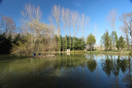 French property, houses and homes for sale in ST PAUL LIZONNEDordogne Aquitaine