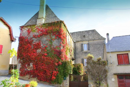 French property, houses and homes for sale in SALIGNAC EYVIGUESDordogne Aquitaine