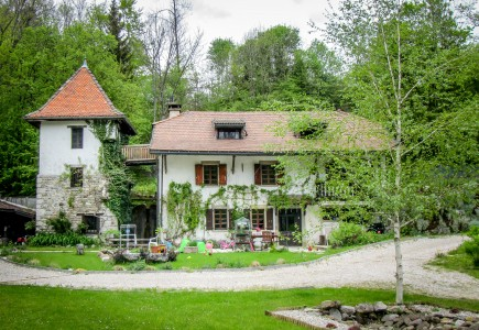 French property, houses and homes for sale in CRUSEILLES Haute_Savoie French_Alps
