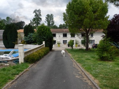 French property, houses and homes for sale in PERIGNAC Charente_Maritime Poitou_Charentes
