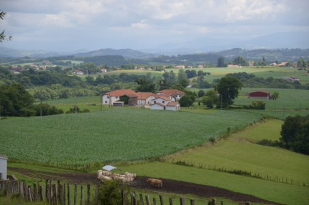 French property, houses and homes for sale in Arraute Charritte Pyrenees_Atlantiques Aquitaine
