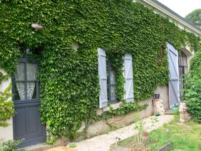 French property, houses and homes for sale in ST EPAINIndre_et_Loire Centre