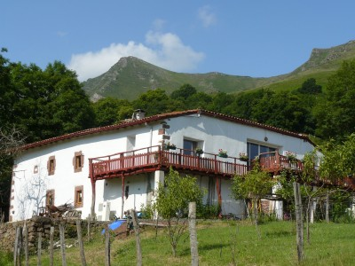 French property, houses and homes for sale in BIDARRAY Pyrenees_Atlantiques Aquitaine
