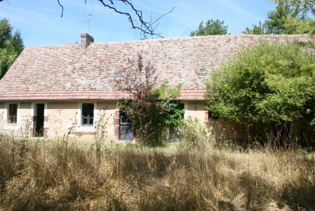 Restoration project homes for sale