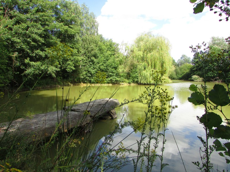 Leggett lakes for sale in armaille maine et loire two for Private fishing lakes