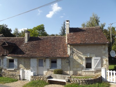 French property, houses and homes for sale in LE PETIT PRESSIGNY Indre_et_Loire Centre
