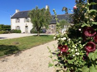 latest addition in Plonevez Porzay Finistere