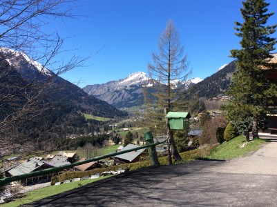 French property, houses and homes for sale in CHATEL Haute_Savoie French_Alps