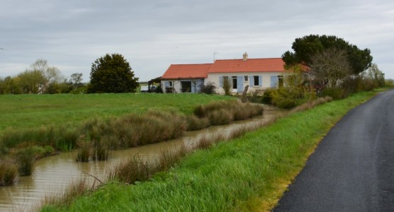 French property, houses and homes for sale in ST JEAN DE MONTSVendee Pays_de_la_Loire