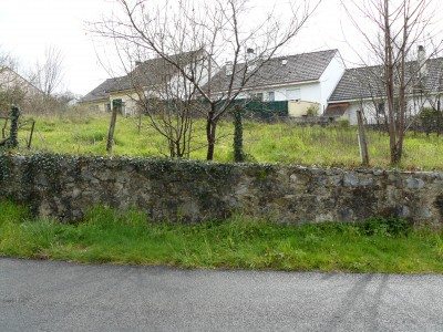 French property, houses and homes for sale in LE PALAIS SUR VIENNE Haute_Vienne Limousin