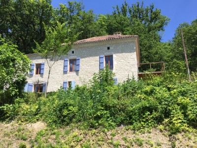 French property, houses and homes for sale in BELVEZETarn_et_Garonne Midi_Pyrenees
