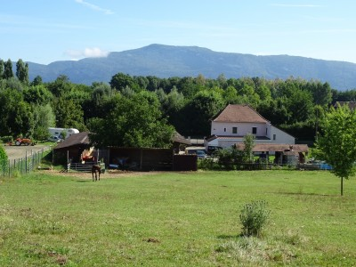 French property, houses and homes for sale in LES AVENIERESIsere French_Alps