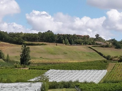 French property, houses and homes for sale in CAZES MONDENARDTarn_et_Garonne Midi_Pyrenees