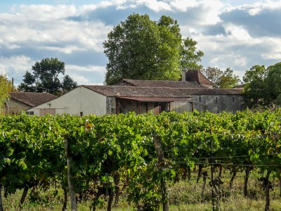 French property, houses and homes for sale in CADILLAC EN FRONSADAIS Gironde Aquitaine