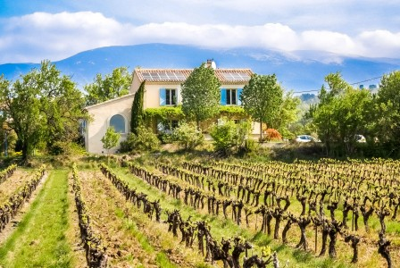 French property, houses and homes for sale in MAZAN Vaucluse Provence_Cote_d_Azur