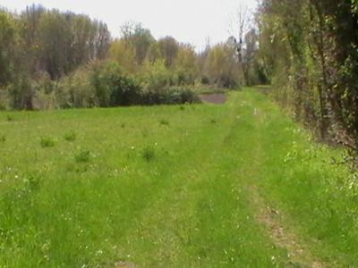 French property, houses and homes for sale in NERE Charente_Maritime Poitou_Charentes